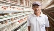 ララコープ産直たまご>澄んだ空気と、少々厳しい自然の中で育った頑丈な鶏から生まれる。