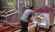 その2=清潔な工場で育まれるバランスのよいワイン。
