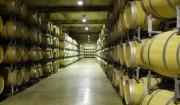 その3=進化しながら続いている生産者組合によるワインづくり。