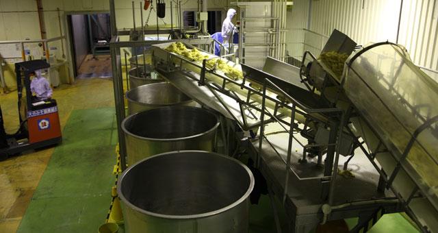 混ぜられた味噌のもとは、こちらの2トンタンクの中に。今は攪拌もタンクにつめるのも機械の力で行われていますが、昭和20年代はすべて人の手で行われていました。麹や大豆が入った重たい桶を担いで運び、混ぜ合わせ、大きな仕込み樽に移す。たいへんな重労働だったそうです。