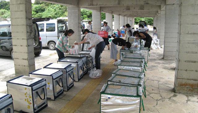 西表島西部での荷受けの様子。ここは保冷バッグをきちんと整列させる派の地域ですね。