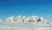 Icy snow landscape of ND 〜ノースダコタから氷と雪の雪景