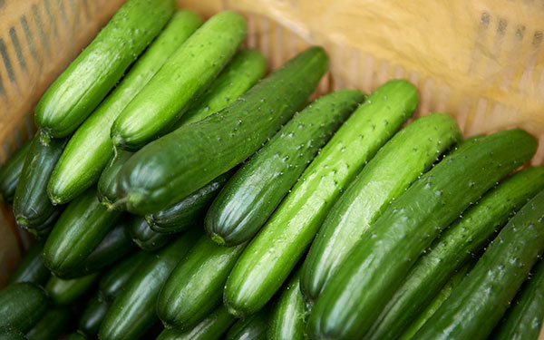 vegetable_0303_08