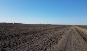 例年より2週間遅れで、小麦の植え付けが始まります。