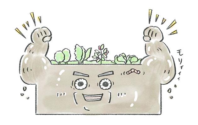 健康なはたけの土と農作物。